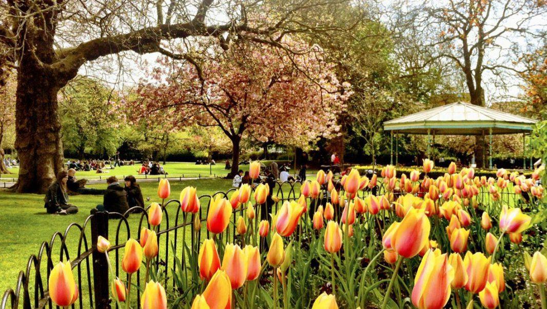 Calendario Gaélico. La primavera ya está aquí